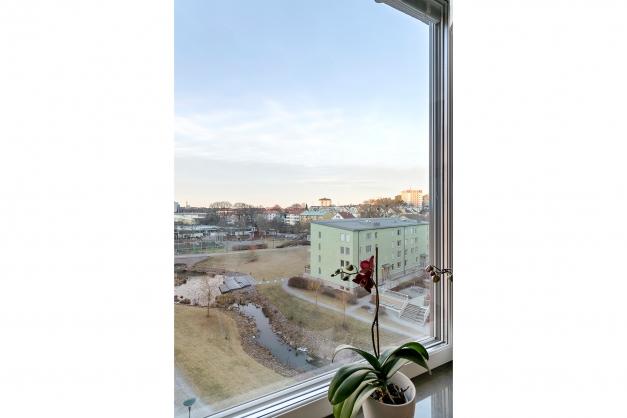 Utsikten genom fönstret i sovrummet