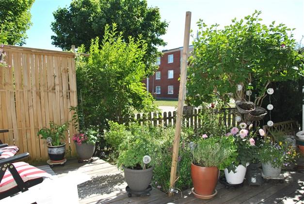 Altan och trädgårdstäppa