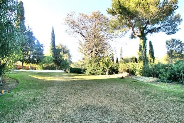 Gemensam trädgård och gräsmatta