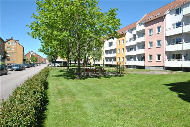 Innergården (arkivbild, sommar)