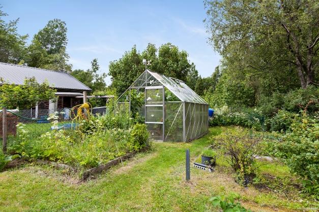 Lummig och välutvecklad trädgård med flertalet trädgårdsväxter och fruktträd.