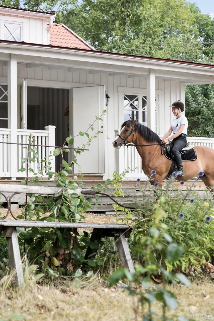 Sommardag på hästryggen!