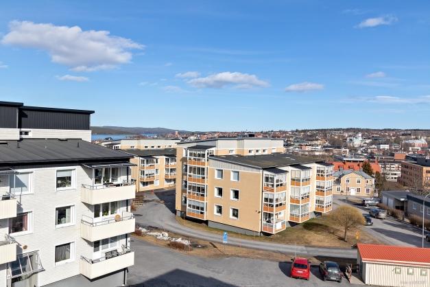 Utsikten från lägenheten