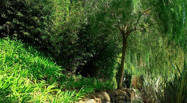 Fina grönområden