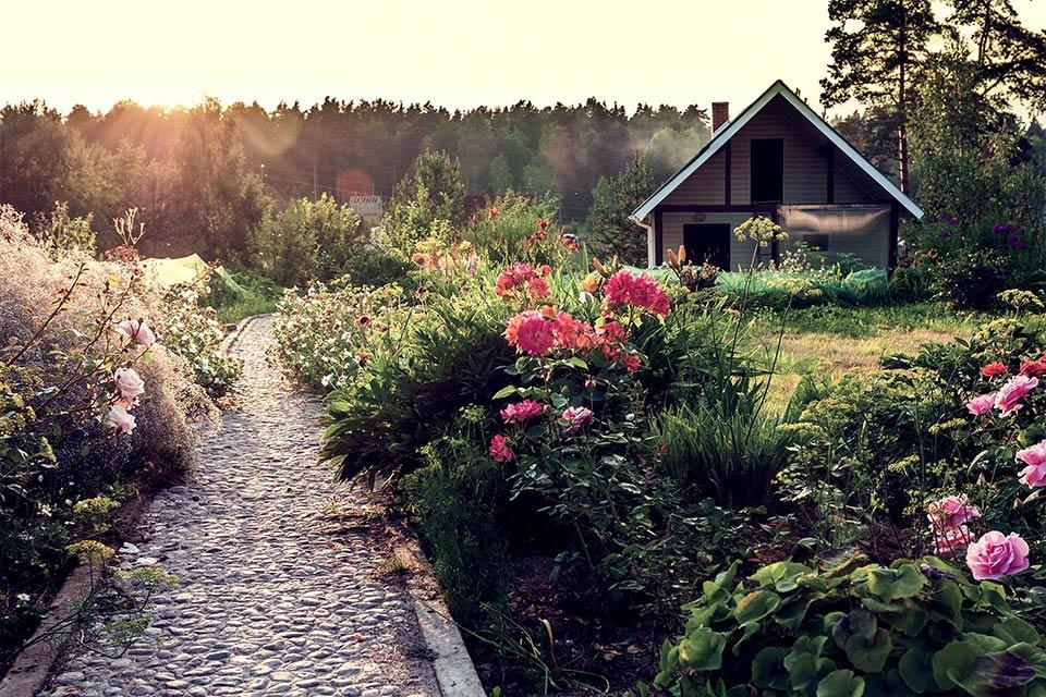 Kom igång med din trädgård